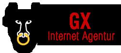 Borucinski Grafix, Internet Agentur